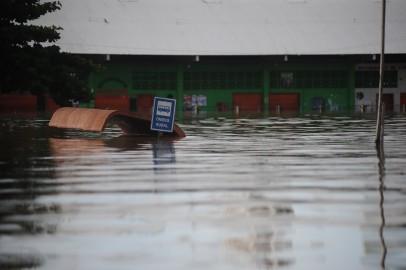 (Imagem: Greenpeace Brasil)