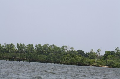 Mangue em Colombo, Sri Lanka. Foto the Shankar S./Flickr