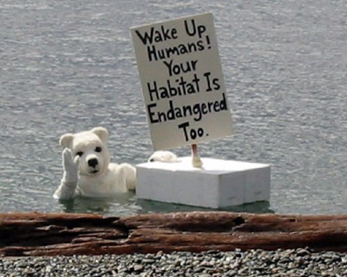 "Serakatie/ Flickr ""Humanos, despertem! Seu habitat também está em perigo"""