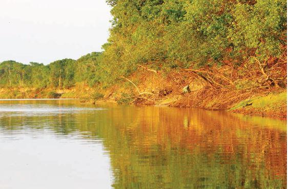 O trabalho pretende envolver os proprietários rurais às margens do Rio Araguaia na composição do que poderá vir a ser o maior corredor de biodiversidade do mundo, com trechos de até 40 quilômetros de largura, 20 de cada lado do rio, abarcando 10,4 milhões de hectares ao todo