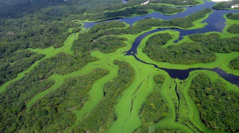 Ministro Sarney Filho defendeu uso do Fundo Amazônia para projetos de saneamento e gestão de resíduos no Norte e Nordeste - mas será que esta é a abordagem correta? (crédito: Lincoln Barbosa/Wikimedia - Creative Commons 3.0)