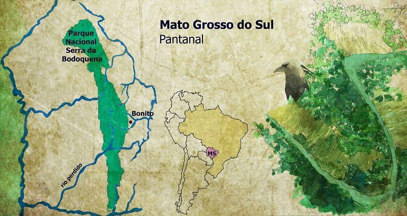 brasil_adentro_(1)[1]