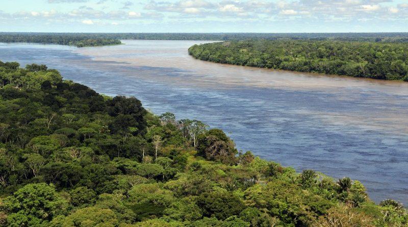 Em entrevista, Annelise Vendramini (GVces) destacou importância do CAR e do Novo Código Florestal para gestão territorial brasileira (crédito: Neil Palmer/CIAT/Flickr - CC BY-SA 2.0)