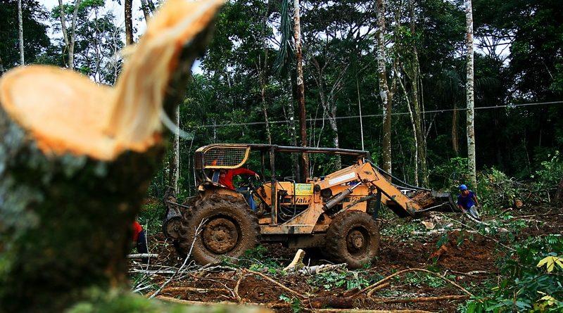 Entre 2014 e 2015, as emissões brasileiras aumentaram 3,5%; no mesmo período, as emissões relacionadas a mudança de uso da terra e florestas cresceram 12% (crédito: Eduardo Santos/Flickr - CC BY 2.0)