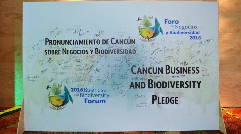 Mais de 100 instituições, entre empresas e bancos, assinaram o Bussiness and Biodiversity Pledge durante a 13ª Conferência das Partes (COP 13) da Convenção sobre Diversidade Biológica, em Cancún (foto: Natalia Lutti/GVces)
