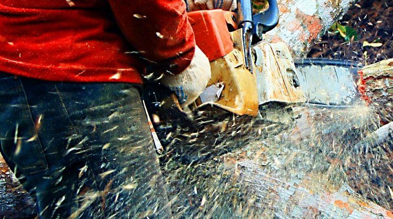 Em nome de ganhos baratos de curto prazo que favorecem a poucos, estamos sacrificando ganhos importantes de longo prazo que favorecem a todos (imagem: desmatamento nas obras da UHE Santo Antonio/Eduardo Santos/Flickr - CC BY 2.0)