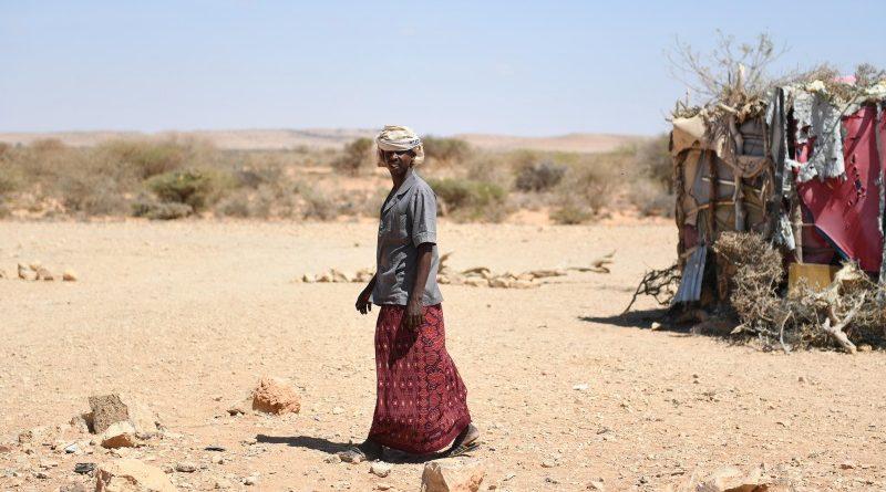 Acostumada com sucessivas secas nas últimas décadas, a Somália vive hoje mais uma crise humanitária profunda relacionada com a falta de chuvas; segundo a ONU, desde 2015 mais de 730 mil pessoas abandonaram suas casas em busca de água e alimento (crédito: UNSOM Somalia/Ilyas Ahmed/Flickr - Domínio Público)