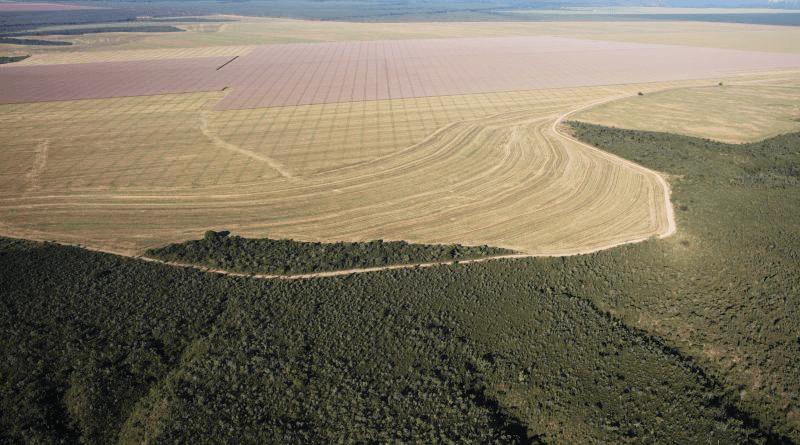 Marizilda Cruppe/ Greenpeace. Vista aérea da cidade de Balsas, Maranhão, na região conhecida como Matopiba, que abrange os estados de Maranhão, Tocantins, Piauí e Bahia.