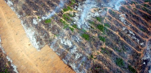 Aumento do desmatamento no bioma Amazônia tem como uma das principais causas a expansão agropecuária. Fonte: amazonia.org.br; Henders, 2015