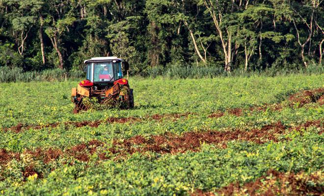 Agricultura de precisão avança no Brasil Fonte: Senar, 2013; Dinheiro Rural, 2016
