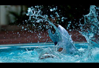 Água e saneamento: o papel das agências reguladoras na correção das externalidades