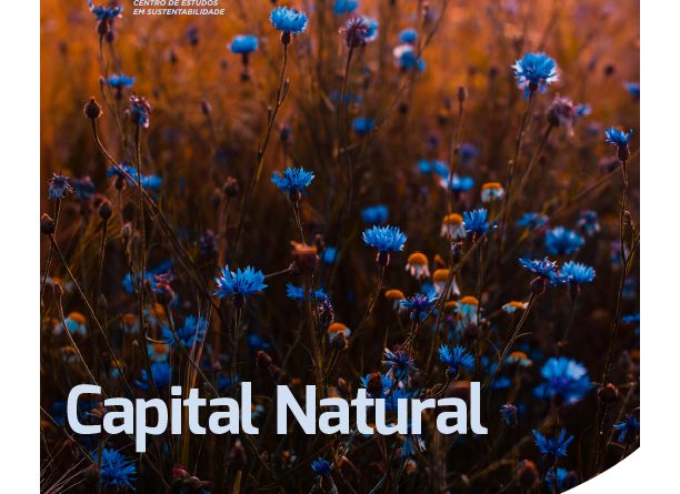 P22ON_OUTUBRO-2018 CAPITAL_NATURAL FINAL-1