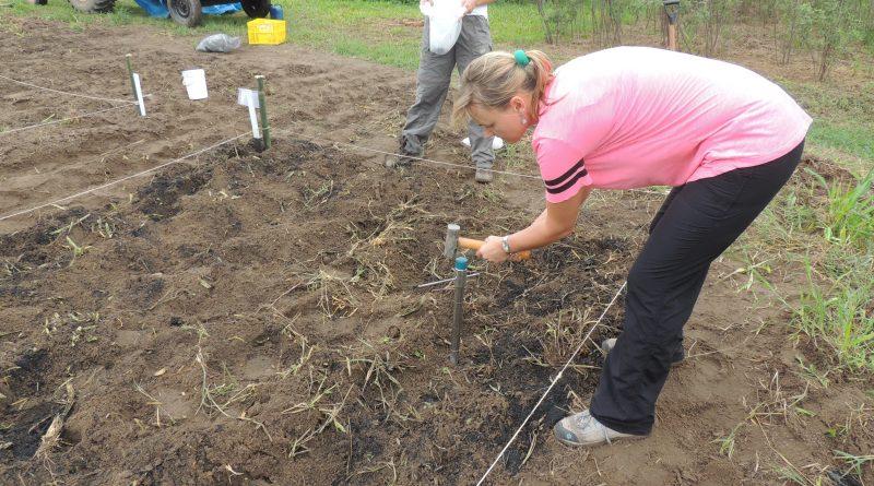 Divulgação _ Professora Agnieszka Latawiec em trabalho de campo