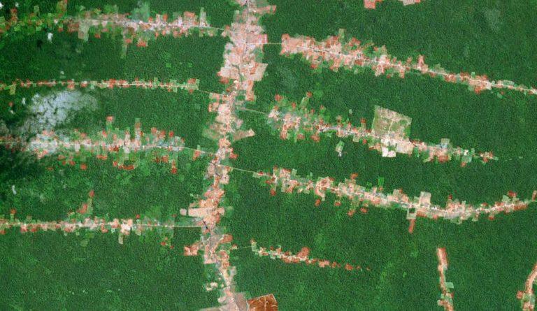 Nasa. Imagem de satélite da Amazônia Brasileira, mostrando início de desmatamento em forma de espinha de peixe