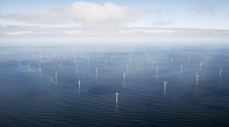 Parque eólico da Ørsted/ Divulgação