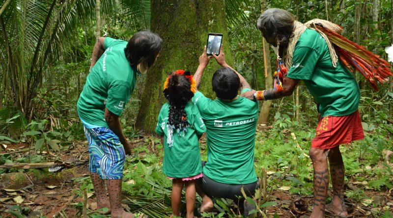 Tecnologia auxilia povos indígenas a manejar produção da castanha em Mato Grosso